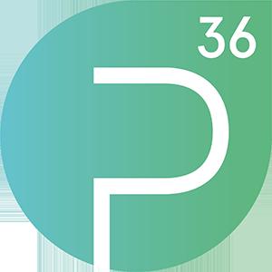 Logo Projektraum36