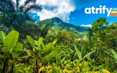 Neue Bäume für den aTREEfy Wald zum World Environment Day